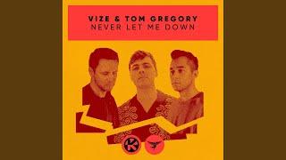 Musik-Video-Miniaturansicht zu Never Let Me Down Songtext von VIZE & Tom Gregory