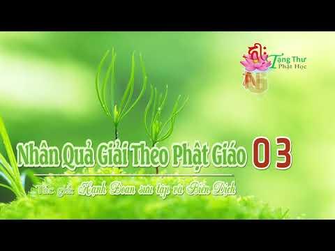 Nhân Quả Giải Theo Phật Giáo -03