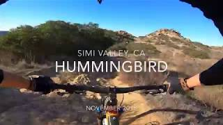 Hummingbird DH - Simi Valley, CA