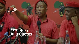 Five spicy Malema quotes in lead-up to December's EFF conference