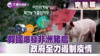 【完整版】2019.09.21《文茜世界周報-亞洲版》韓國爆發非洲豬瘟 政府全力遏制疫情   Sisy's World News