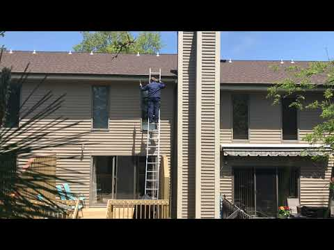 Exterminating Carpenter Bees in Freehold, NJ