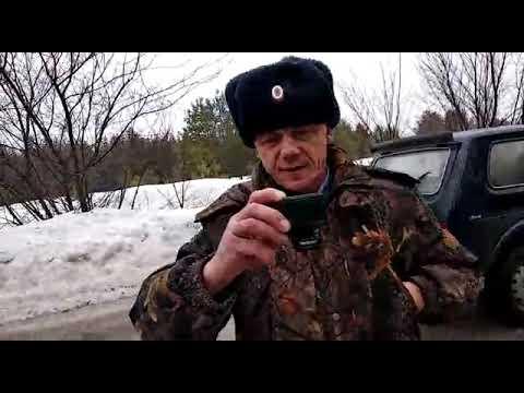 """Активисты обвиняют сотрудников """"Самарской Луки"""" в гибели лосенка"""