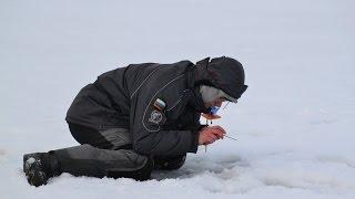 Соревнования по рыбной ловле в кемеровской области