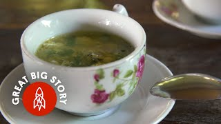 Download Youtube: Living With 80,000 Birds to Make Bird Nest Soup