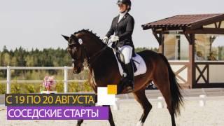 Августовские турниры в Maxima Stables