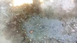 Aguas termales de aconchi
