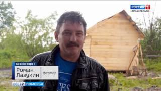 На одной из красноборских ферм появился лосёнок Вася