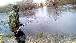 Рыбалка на подъёмник (паук) в нерест