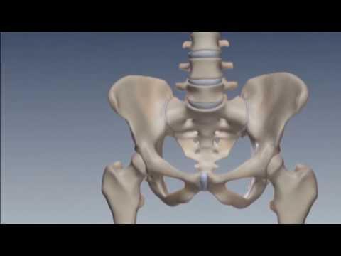 Dolore alle cause della colonna vertebrale toracica