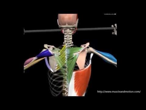 Wunde Hals Schultern die linke Hand gibt