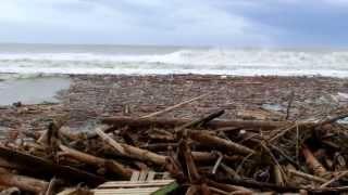 台風12号がれきの山になってる三重県七里御浜