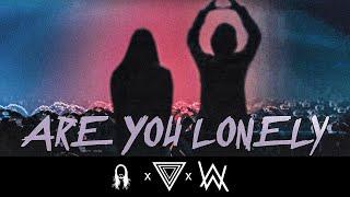 Alan Walker & Steve Aoki   Lonely (feat. ISÁK & Omar Noir) [StiggiZ Remix]