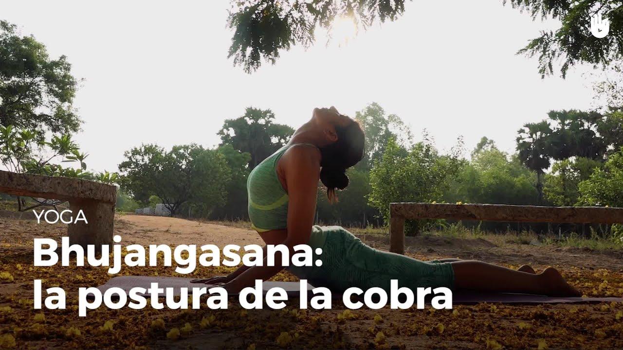 Bhujangasana  la cobra - Aprende a hacer Yoga  aa4b3d6ad3cf
