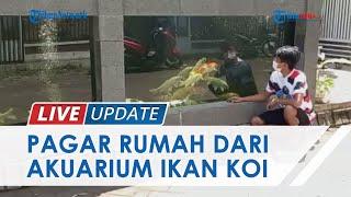 Videonya Viral, Begini Penampakan Asli Pagar Rumah dari Akuarium Berisi Ikan Koi di Malang
