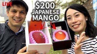 $200 Miyazaki Mango Unboxing and Tasting