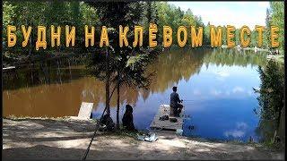 Клёвое место рыбалка лосиный остров форум