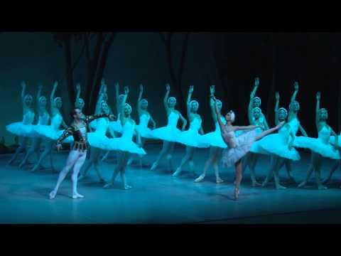 El Llac dels Cignes · St. Petersburg Festival Ballet