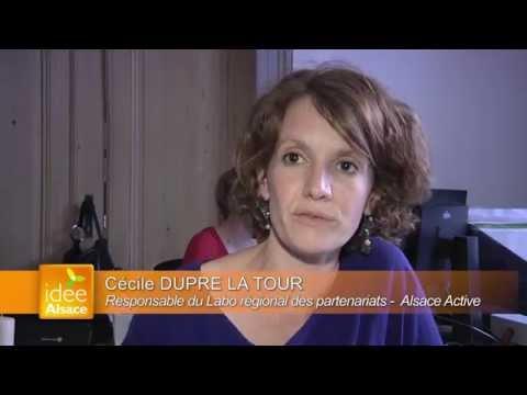 ALSACE ACTIVE présente Le laboratoire régional des partenariats, catalyseur d'innovations sociales