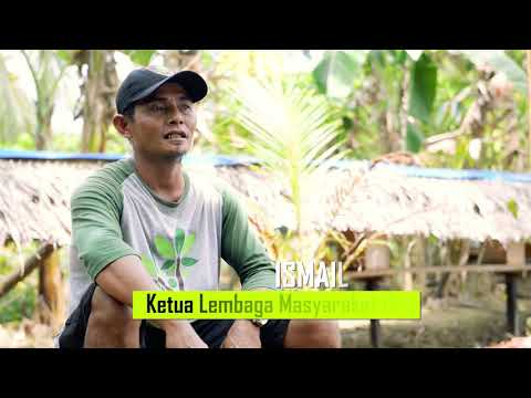 Pemantik Asa di Bentang Pesisir - Hutan Sosial