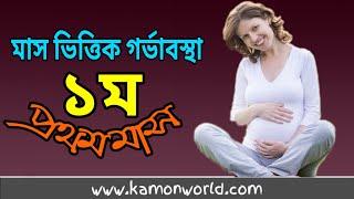 মাস অনুযায়ী গর্ভাবস্থা ১ম মাস | Mas Onujayi Gorvabostha 1 | 1st Month Pregnancy In Bangla.