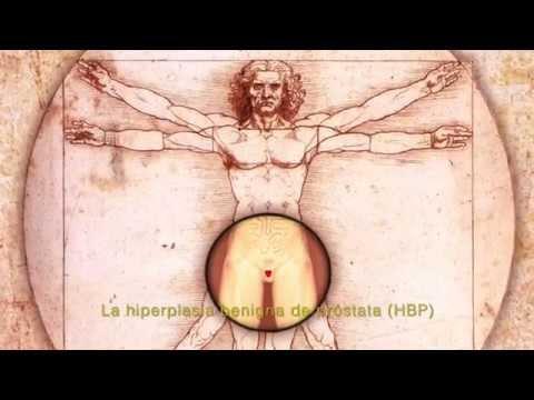 Masaje manual del video de próstata