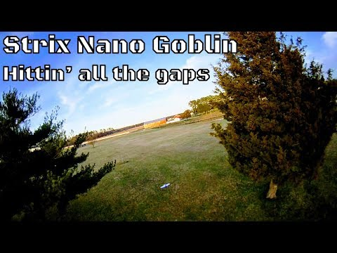 strix-nano-goblin-hittin39-all-the-gaps