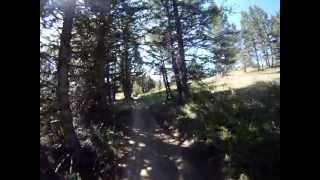 mountain biking the bangtail trail