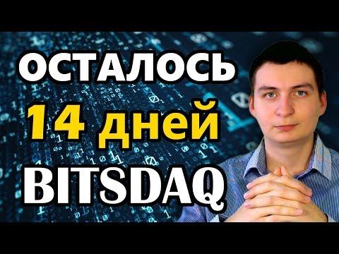 Bitsdaq Осталось 14 дней раздачи Airdrop халявы от партнера Bittrex