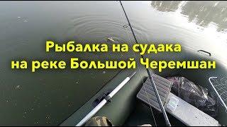 Форум рыбалка черемшан димитровград
