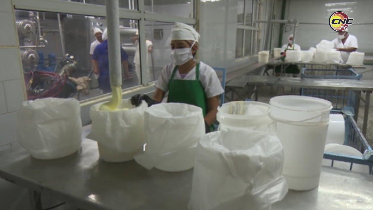 Empresas cárnica y de productos lácteos de Granma diversifican sus producciones