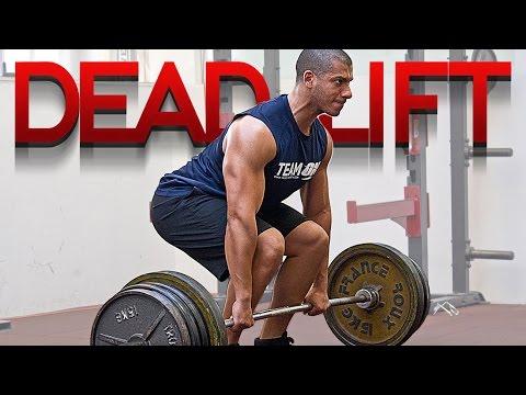 Les exercices avec la barre et les haltères sur tous les groupes des muscles