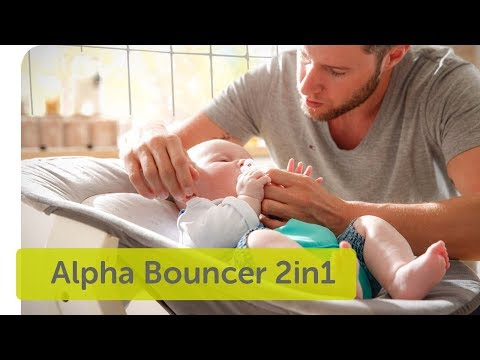 Hauck Alpha Bouncer 2in1