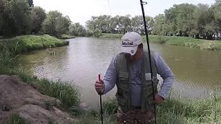 Платная рыбалка семь озер