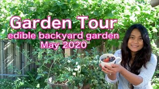 Urban Edible Backyard GARDEN TOUR - May 2020 | What To Grow In Los Angeles