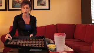How to Start Onion Seeds Indoors in Peat Pellets
