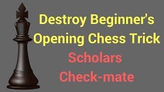 checkmate tricks 免费在线视频最佳电影电视节目 viveos net