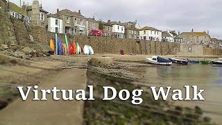 TV for Dogs : Walking Your Dog TV : Virtual Dog Walk around Mousehole Cornwall