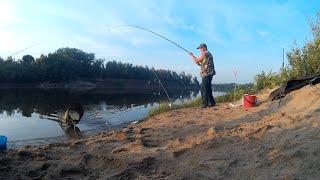 Луна днем на клев рыбы