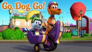 GO, DOG. GO! | Season 1 Trailer | NETFLIX