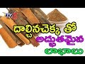 Benefits & Medicinal Uses Of Dalchina Chekka Cinnamon | Veda Vaidhyam #3 | TV5 News