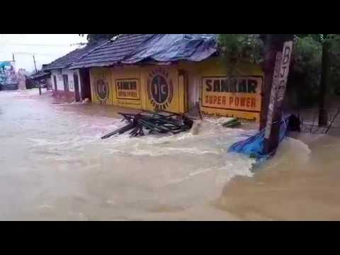 Video: Death toll reaches 75 in Kerala's worst floods in a century