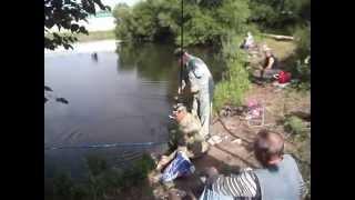 Рыбалка в лагуне москва видное