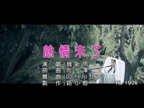 魏新雨   餘情未了   (DJ版)   (1080P)KTV