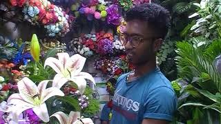 ঢাকা নিউ মার্কেটে, Artificial Flower Pot কিনুন।। Cheapest Artificial Flowers Shop।। BD
