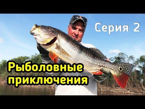 Inverno pescando nel video di regione Di Tomsk