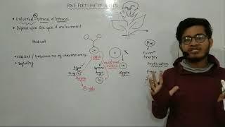 L13: Post fertilisation events- Zygote formation