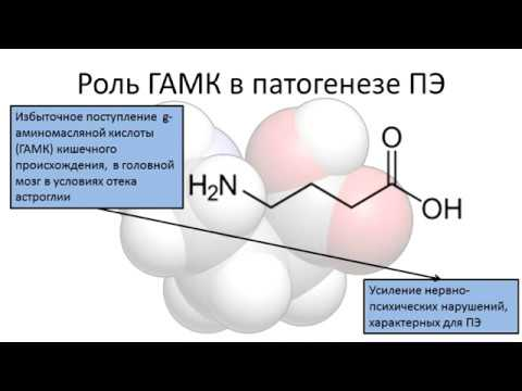 Печеночная Энцефалопатия - этиология, патогенез, лечение