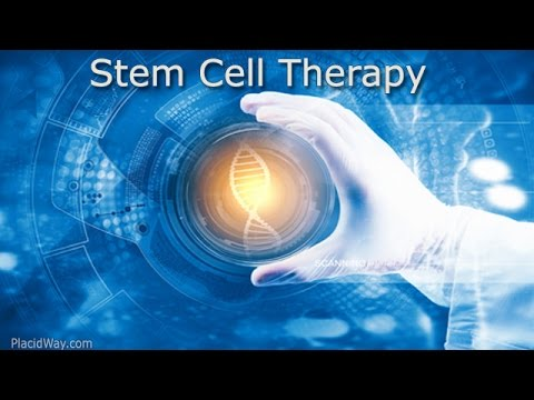 Best-Stem-Cell-Therapy-in-Tijuana-Mexico