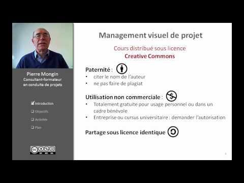 Vidéo Introduction au management visuel